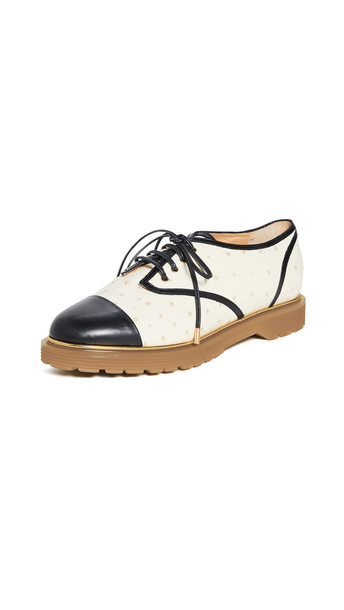 Charlotte Olympia Derby Oxford in black / white