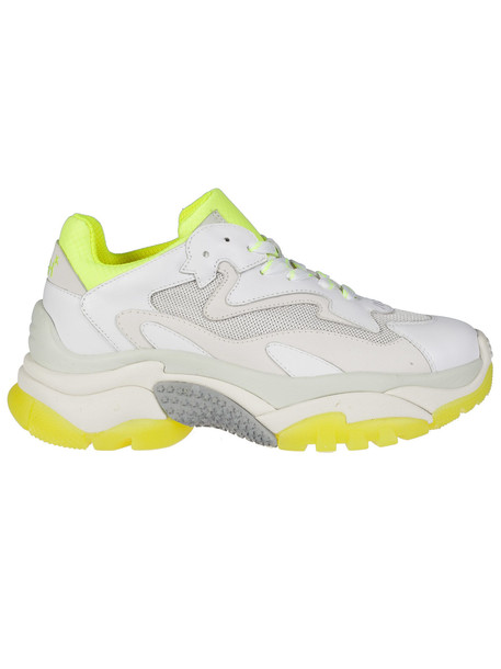 Ash Addict Sneakers in white / yellow