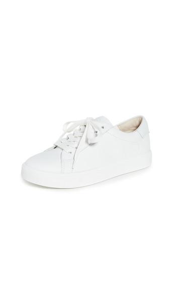 Sam Edelman Ethyl Sneakers in white