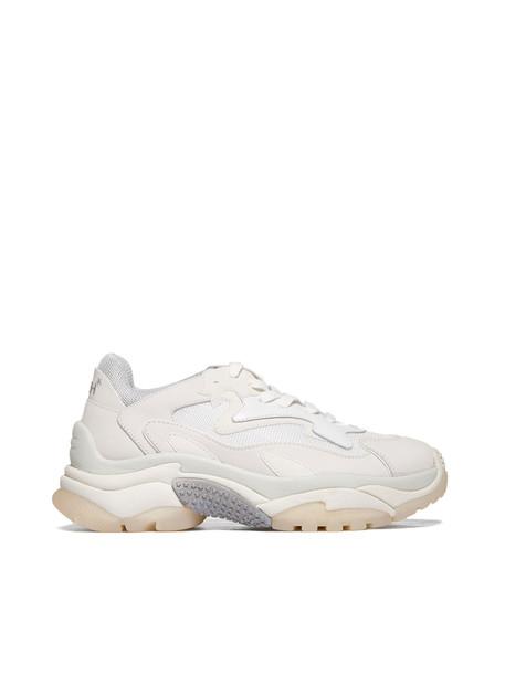 Ash Addict Sneakers in beige / beige