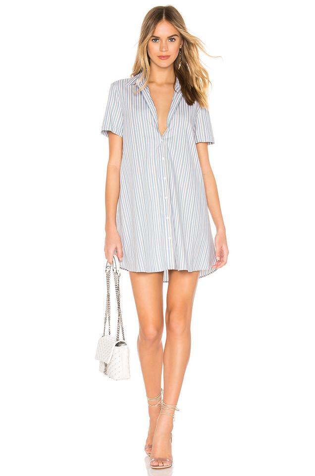 BB Dakota Stripe A Personality Dress in blue