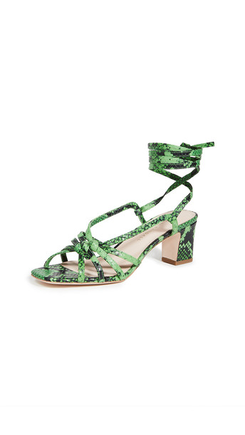 Loeffler Randall Libby Knotted Wrap Sandals in green