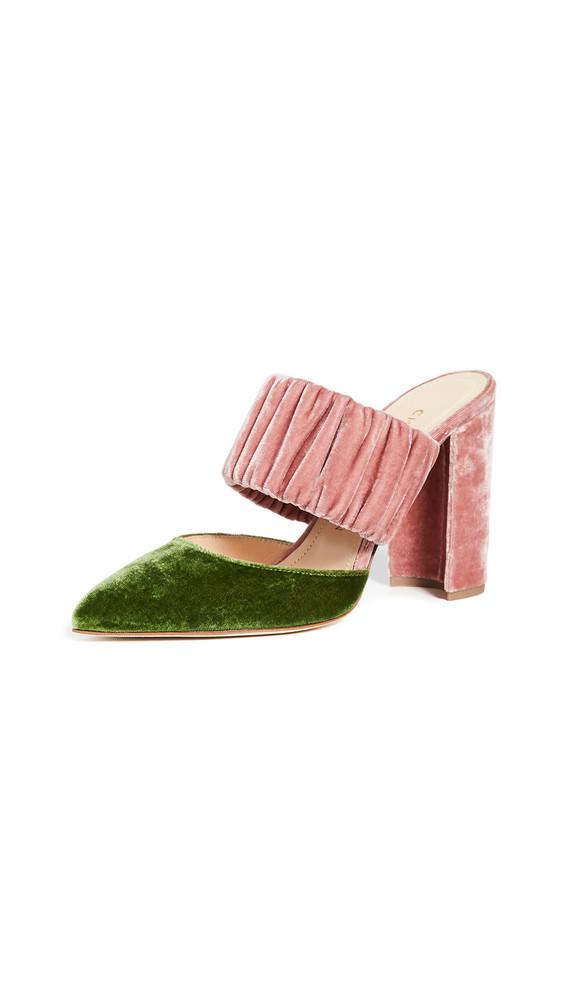 Chloe Gosselin Kiera Bi-Color Pointed Mules in pink