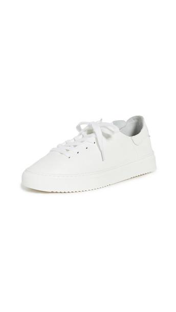 Sam Edelman Poppy Sneakers in white