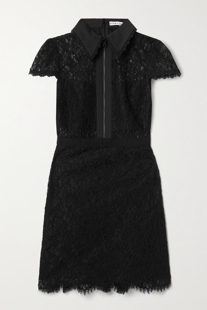ALICE + OLIVIA ALICE + OLIVIA - Ellis Cotton-poplin And Grosgrain-trimmed Corded Lace Mini Dress - Black