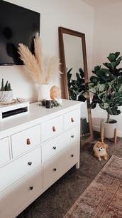 home accessory,mirror,potted plants,home decor,white dresser,cactus