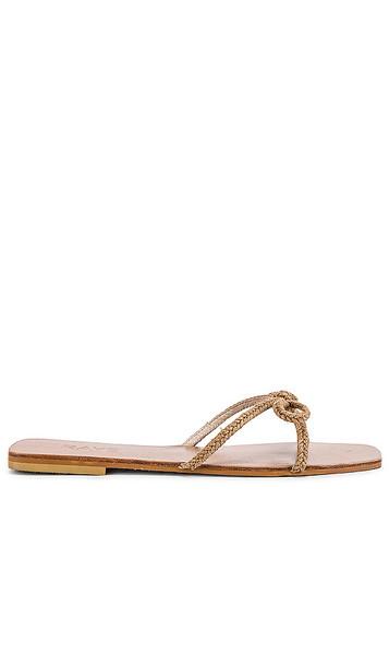 RAYE Bow Sandal in Brown