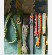 belt,coach belts,d&g belts