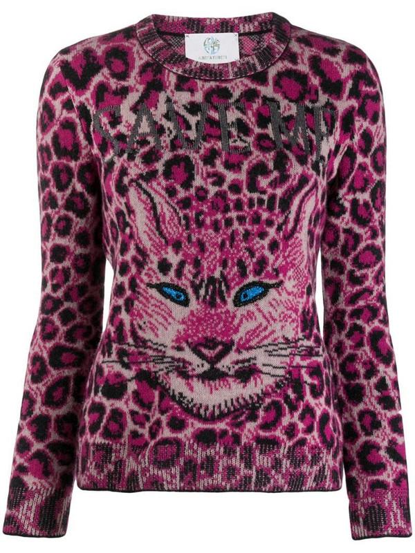 Alberta Ferretti cat print jumper in pink