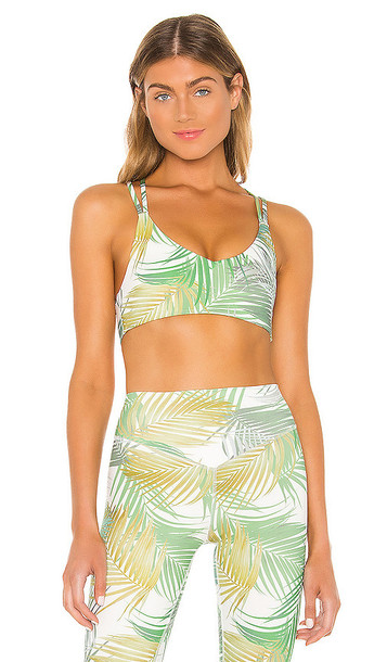lovewave The Phyllis Bra in Green,White