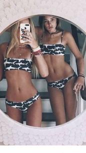 swimwear,grey,white,shark,bikini,bikini top,bandeau bikini,bikini bottoms