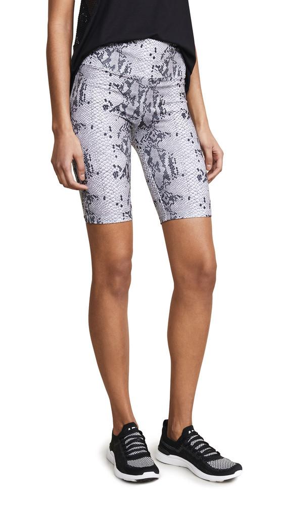 David Lerner Snakeskin Bike Shorts in black / white