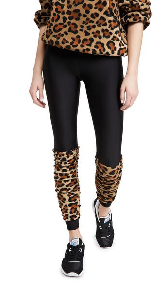 Terez Legwarmer Leggings in black / leopard