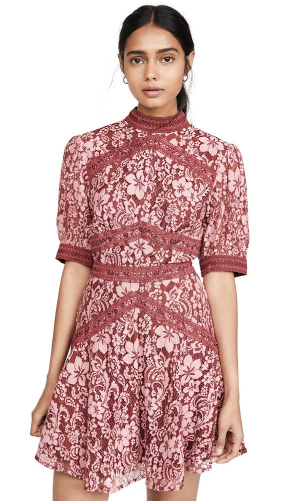 Keepsake Holder Lace Mini Dress in rose