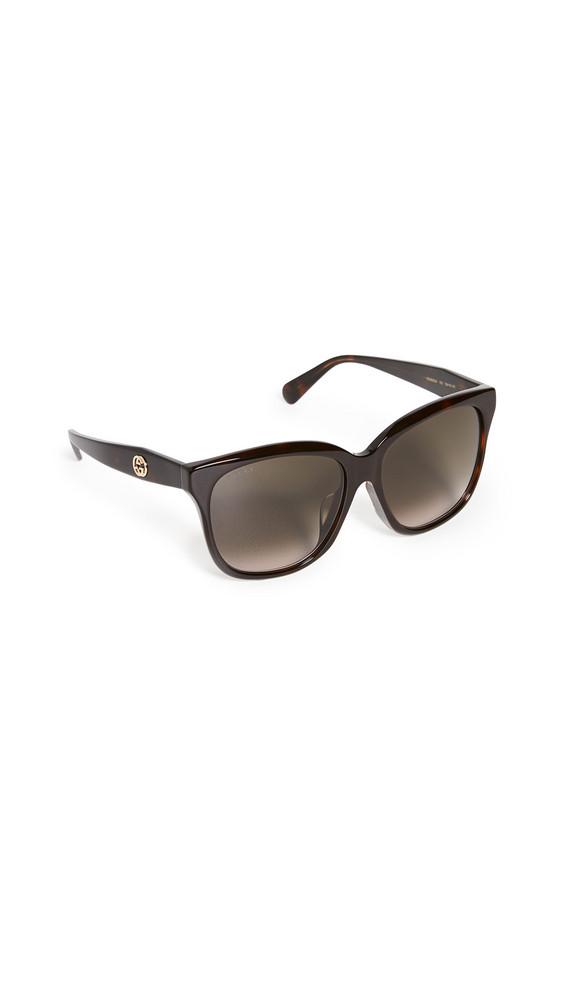 Gucci GG Acetate Oversized Square Sunglasses in brown