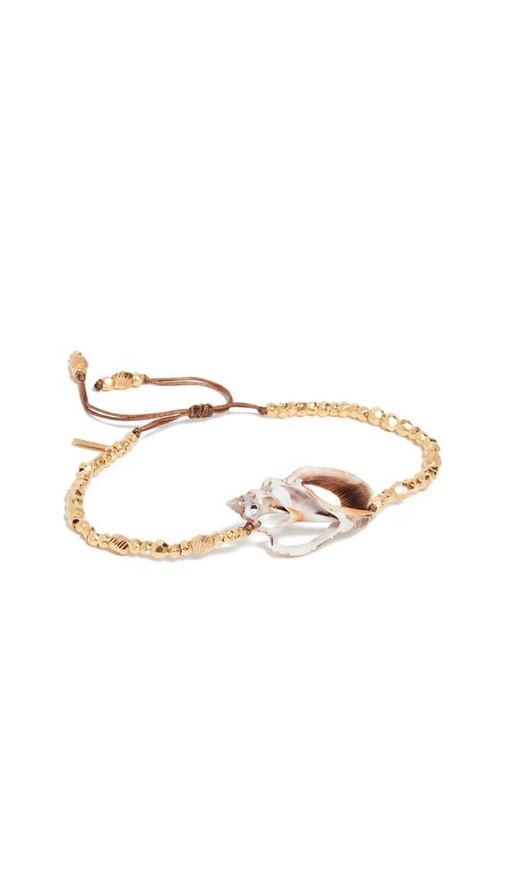 Chan Luu Shell Bracelet in gold / yellow