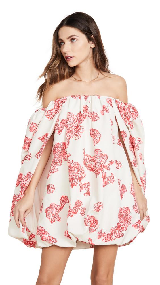 Hellessy Minnelli Lace Printed Faille Dress in ecru