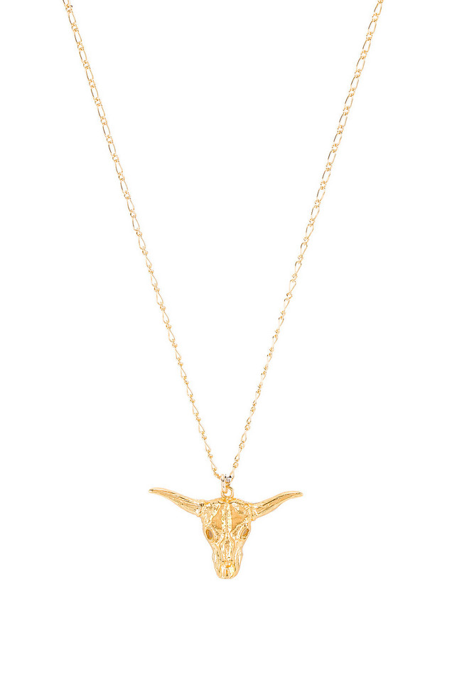 Natalie B Jewelry Big Horn Necklace in gold / metallic