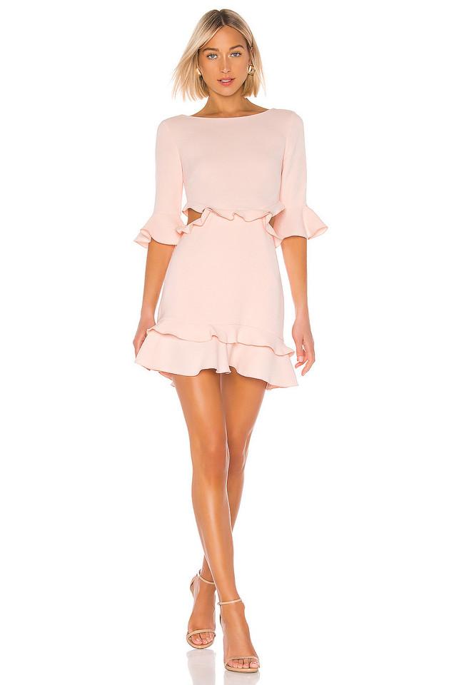 RACHEL ZOE Karly Dress in pink