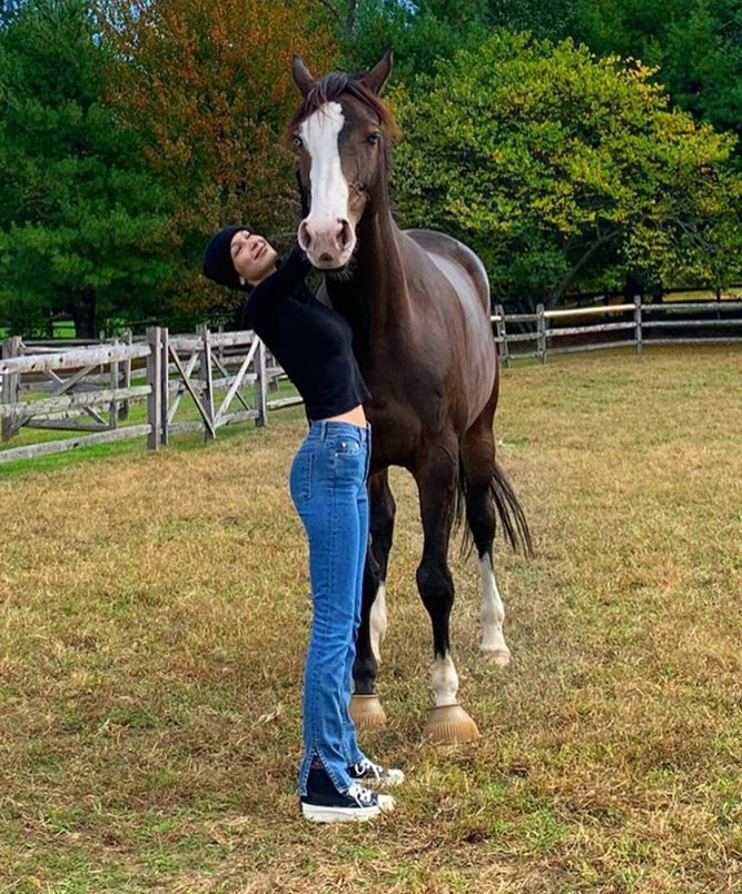 jeans top bella hadid model off-duty celebrity instagram denim blue