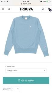 sweater,blue champion