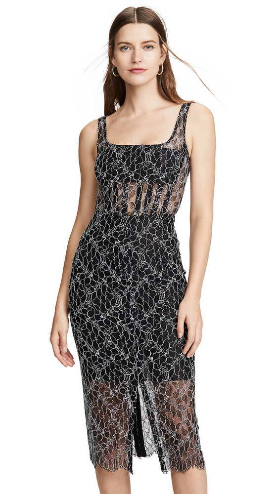 Dion Lee Vein Lace Corset Dress in black / white