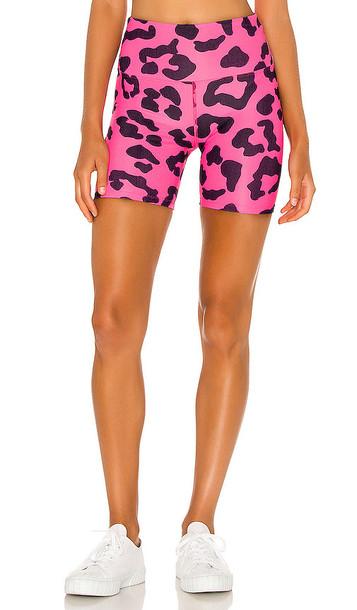 BEACH RIOT X REVOLVE Rib Bike Short in Fuchsia in pink / leopard