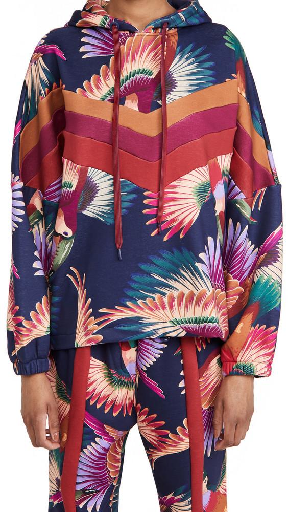 FARM Rio Colorful Toucans Sweatshirt in multi
