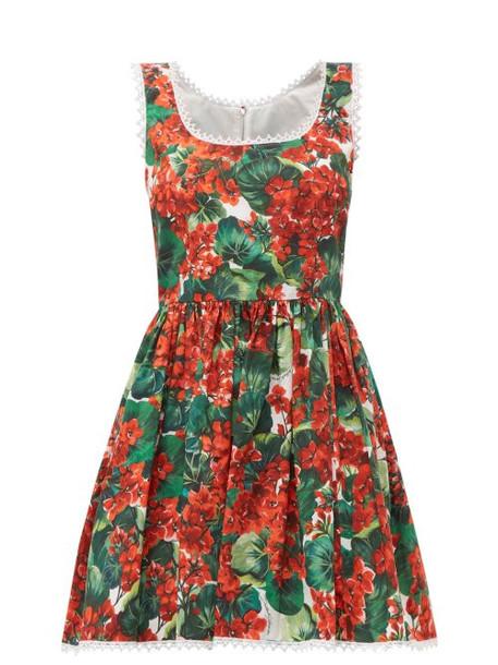 Dolce & Gabbana - Geranium Print Cotton Mini Dress - Womens - Red Multi