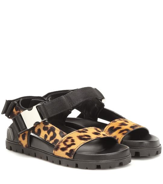 Prada Leopard-print calf-hair sandals in black