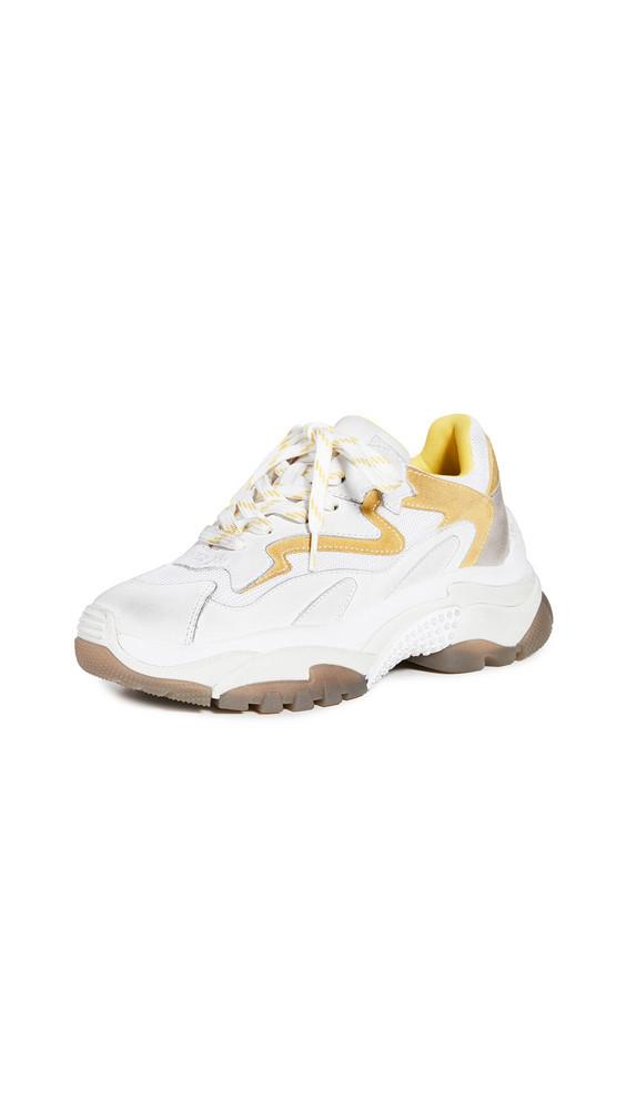 Ash Addict Sneakers in white