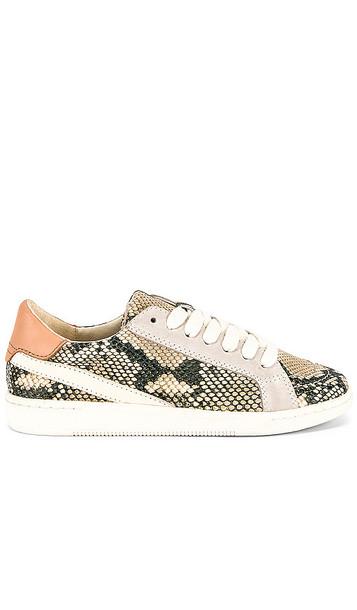 Dolce Vita Nino Sneaker in White
