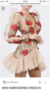 dress,embroidered red and nude  dresss