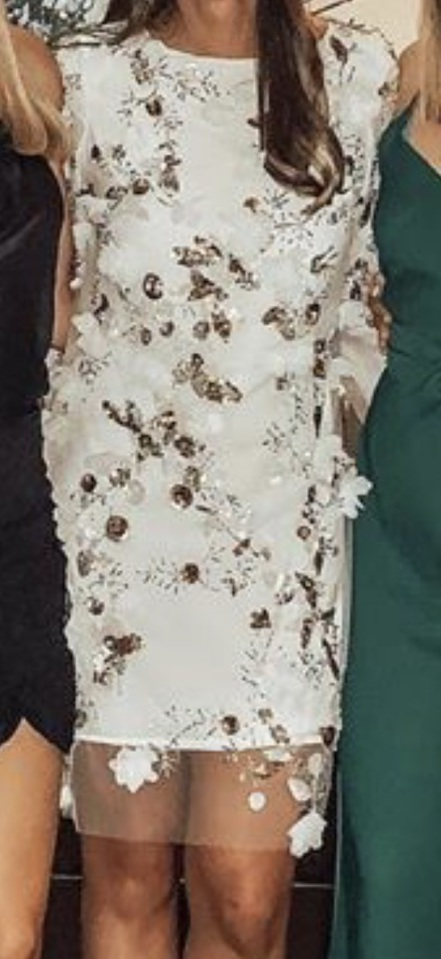 dress while lace with sparkly  components. appeared to have two layers.