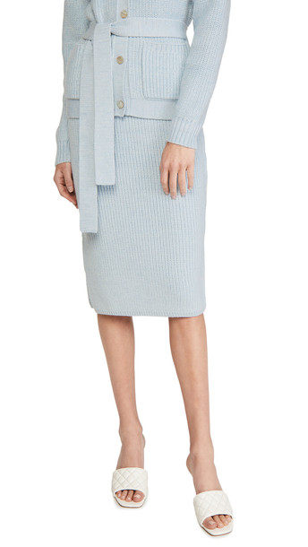 Adam Lippes Knit Pencil Skirt in blue / multi