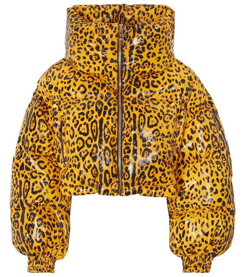 Dolce & Gabbana Leopard-print down jacket