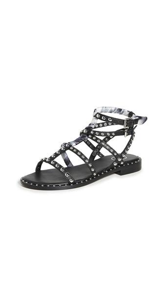 Ash Patchouli Sandals in black / white
