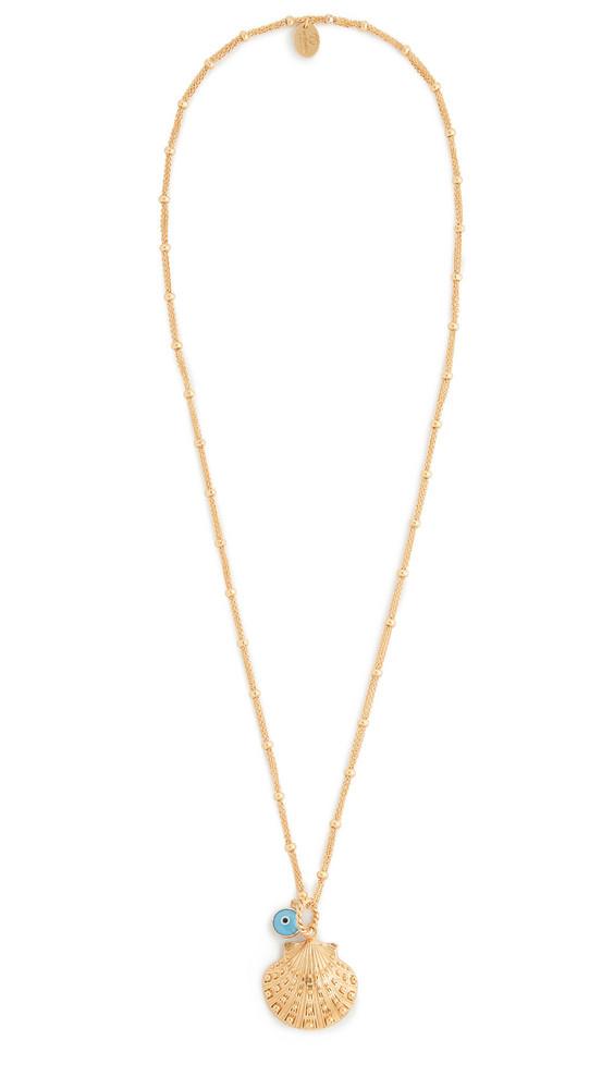 Mallarino Marina Large Seashell Charm Necklace in gold