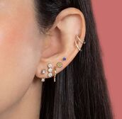 earrings,gold earrings,jewels